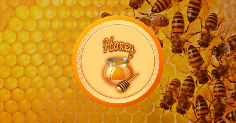 Photo of Sweet Honey – Setting up Honey QT Wallet in Windows