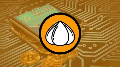 Photo of Official Garlic wallet and Garlium wallet Setup Guide – Garlicoin (GRLC)