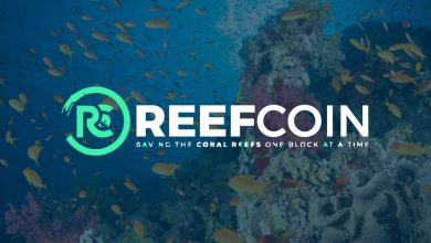 Photo of Reef Coin (REEF) – A cryptocurrency saving marine life and coral reefs?