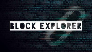 Photo of What is Block Explorer and how to use it? Blockchain Explorer explained