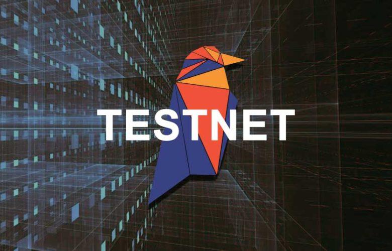 Raven coin Testnet
