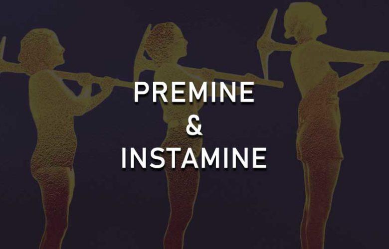 Premine and Insta-mine explained