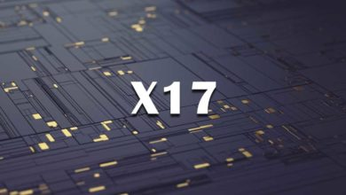 X17 Algorithm
