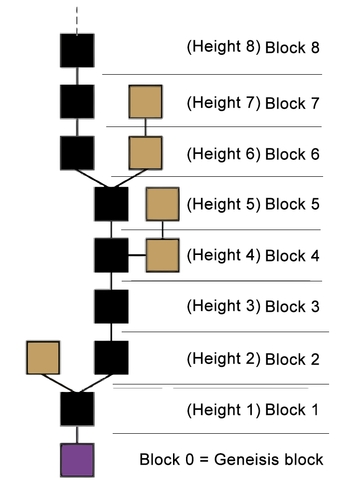 block chain height explained