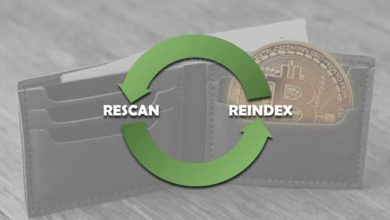 re-index and re-scan wallet