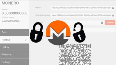 Monero balance locked