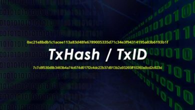 Transaction Hash ID