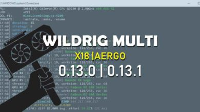 Photo of WildRig Multi 0.13.0, 0.13.1 – Minato (X18 Mining) & fastest X22i AMD Miner
