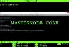 Masternode config file