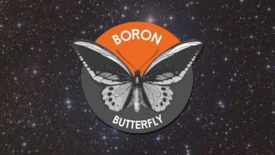 Boron Butterfly