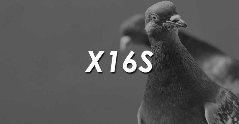 X16S Coins