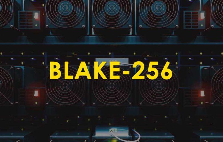 Blake 256 algorithm / coins