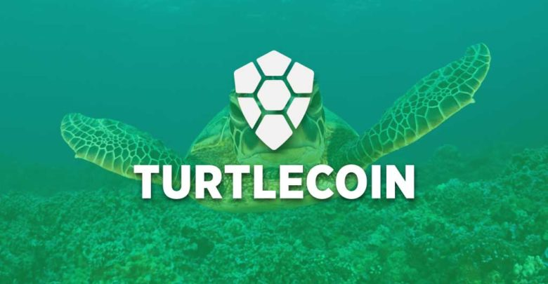 Photo of What is Turtlecoin? TRTL features, specifications and wallet setup