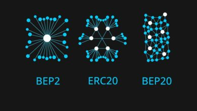 bep2, bep20 and erc20