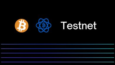 bitcoin testnet wallet